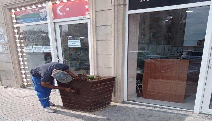 Qaradağ rayonunda ümumrayon iməciliyi keçirilib